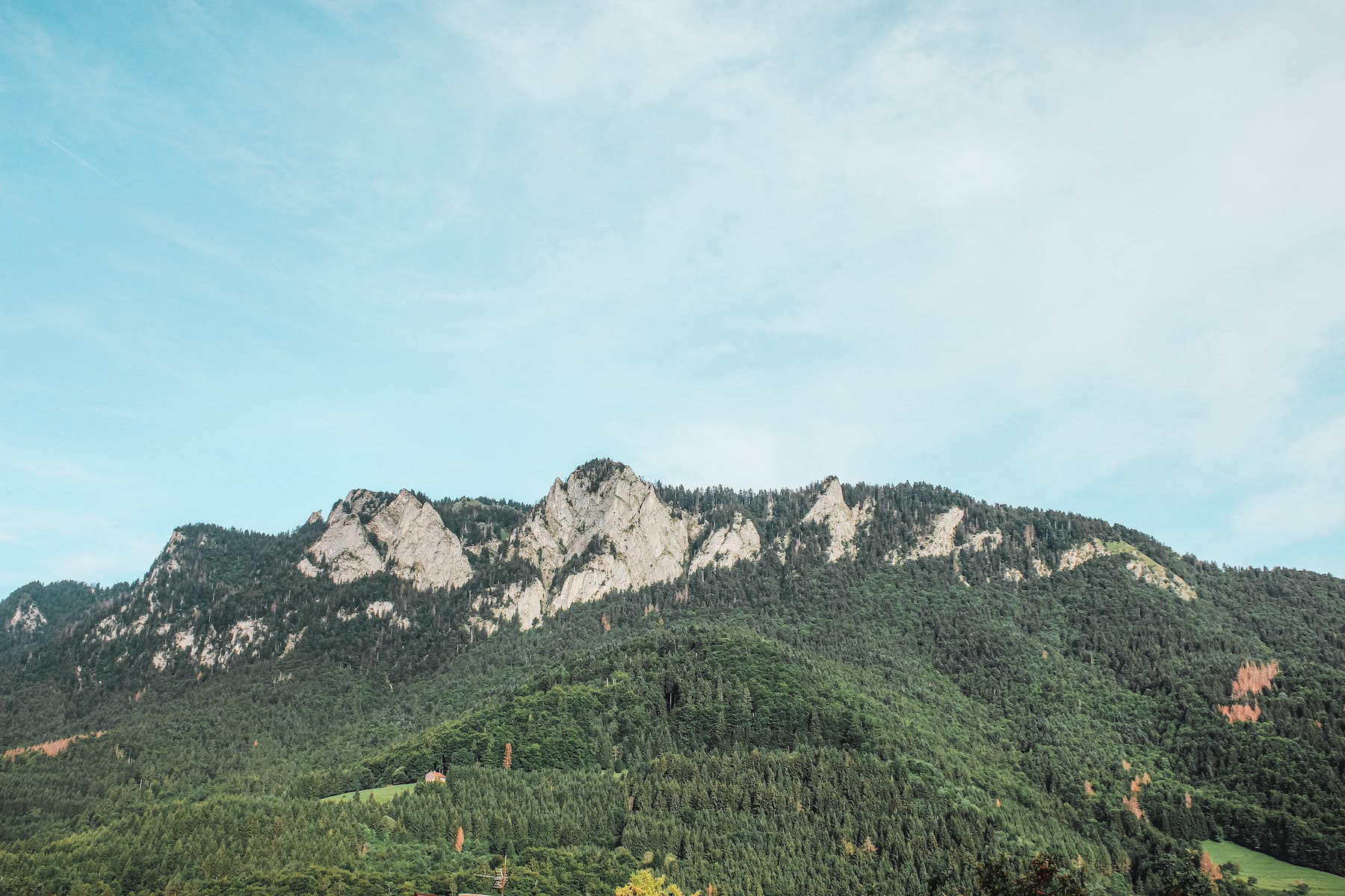 Les Salaisons Debroas obtiennent le soutien du conseil régional Auvergne Rhône-Alpes !